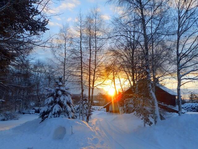Příjezdová cesta k domu v zimě