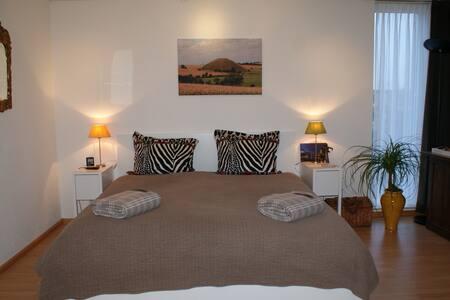 Moderne B&B in rustige woonwijk - Deventer - Bed & Breakfast