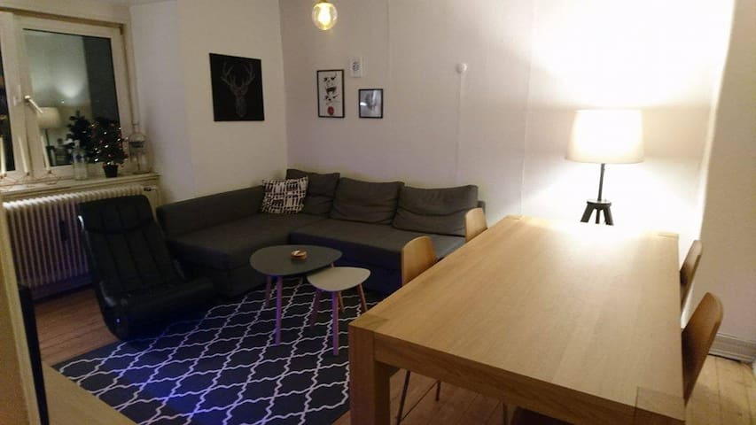 Perfect apartment right in the city's center - Aalborg - Appartement