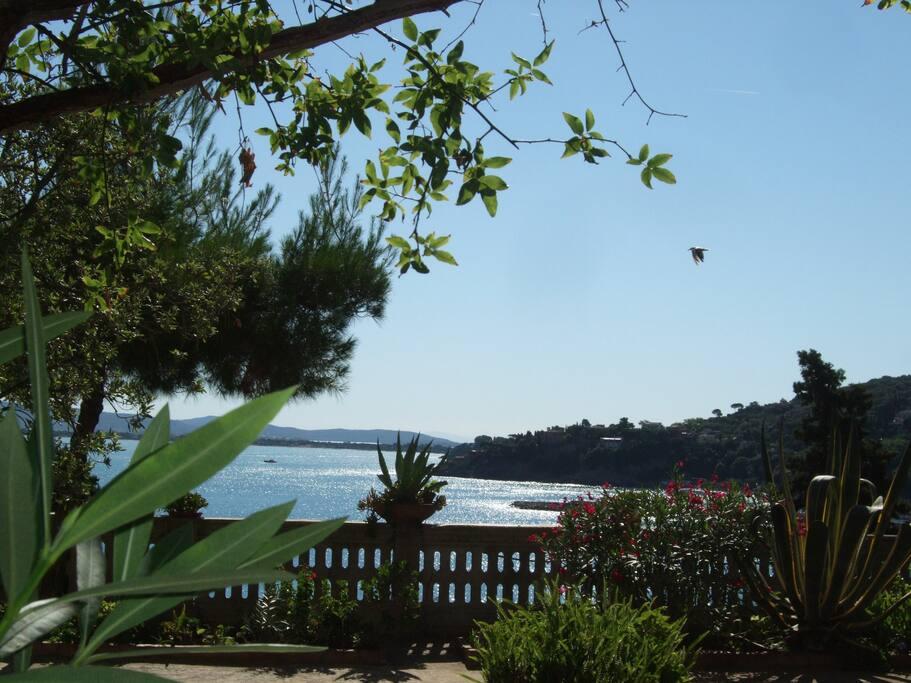 Sea view Mediterranean Garden