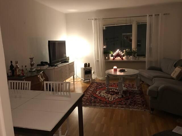 Mysig central lägenhet - Jönköping - Wohnung