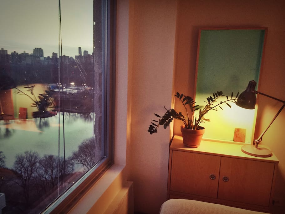 View of Central Park from your new bed! And cabinets to store anything you might need.