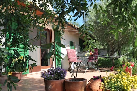 Casita Caracol with pool - Manacor - Guesthouse