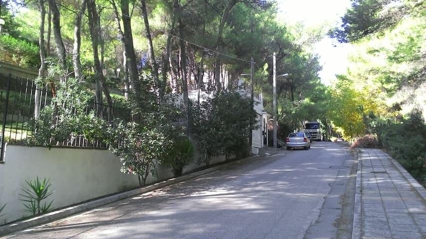 ΥΠΕΡΟΧΟ ΣΠΙΤΙ ΜΕ ΘΑΥΜΑΣΙΟ ΠΕΡΙΒΑΛΛΟΝ - Thrakomakedones - Casa