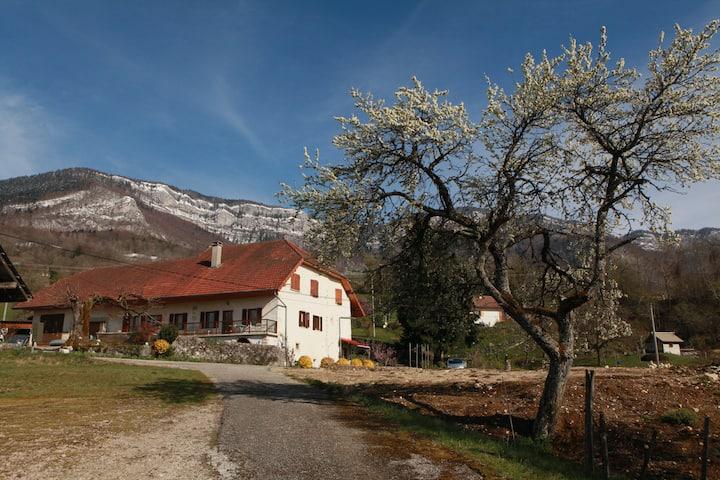 Gîte à la ferme Massif  Bauges verdoyant belle vue