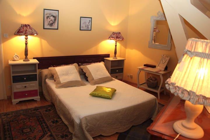 LA VIGNE VIERGE - Chambre Double Violette - Castillon-en-Couserans - 旅舍