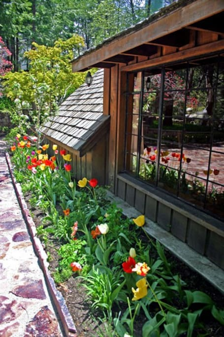 Tulips / daffodil bulbs and dogwood trees pink and white are in full bloom May/June.