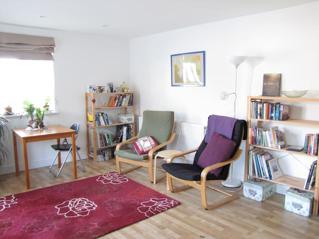 LIGHT SPACIOUS FALMOUTH TOWN FLAT - Falmouth - Daire