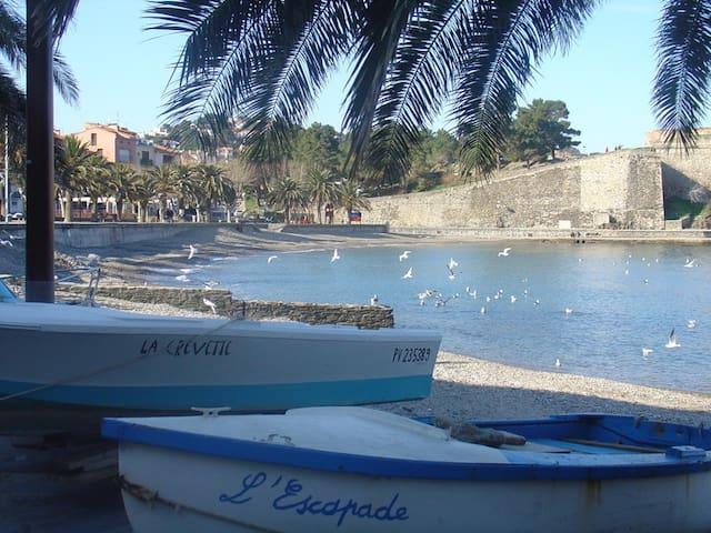 Collioure les pieds dans l'eau (20m de la plage) - Collioure - Departamento