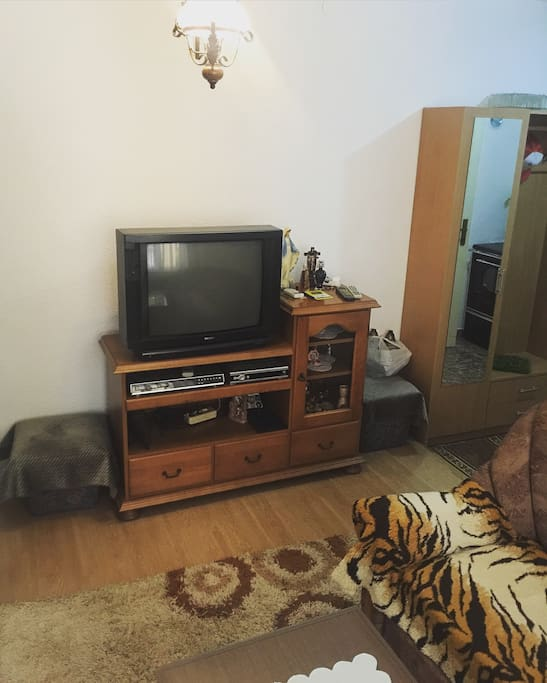 Livingroom with Satellite TV