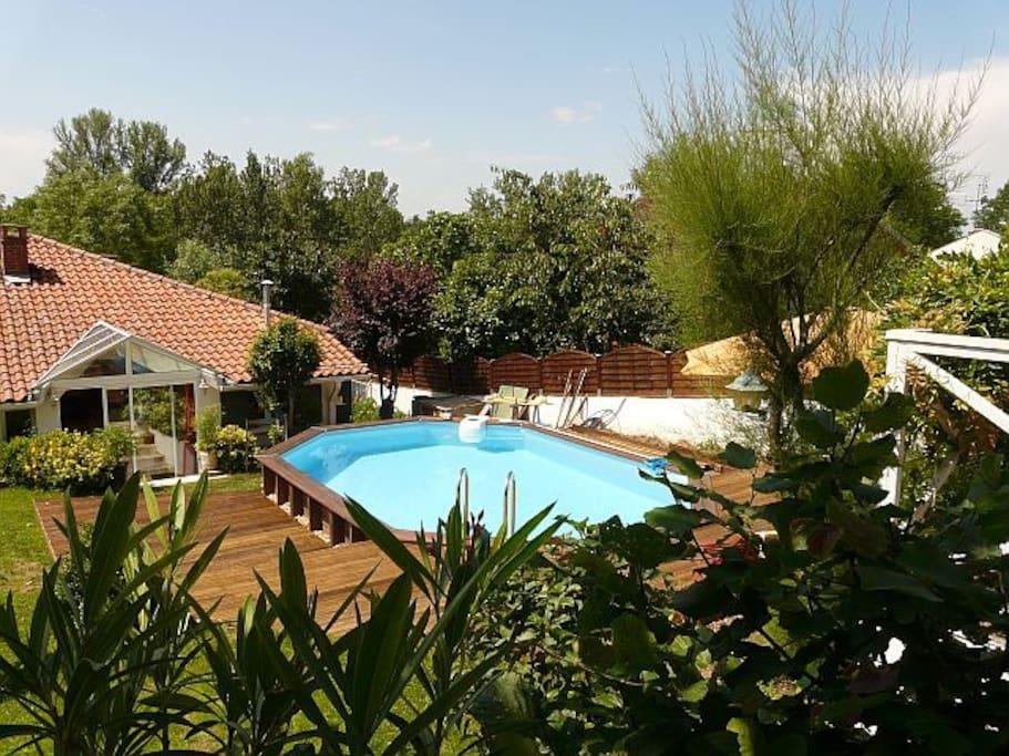 piscine à l'arrière de la maison