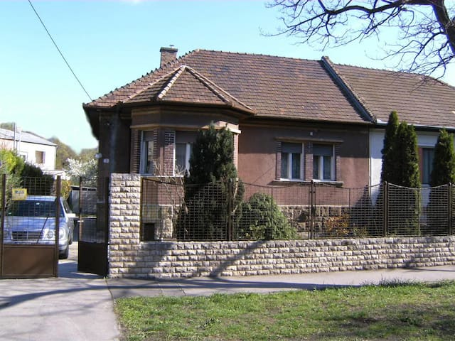 House in Budapest with big garden for family & dog