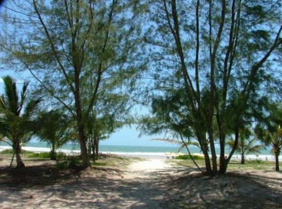 Praia de Taquary