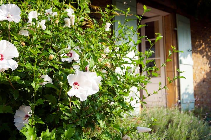 Stunning Period House - La Maison Perigordine