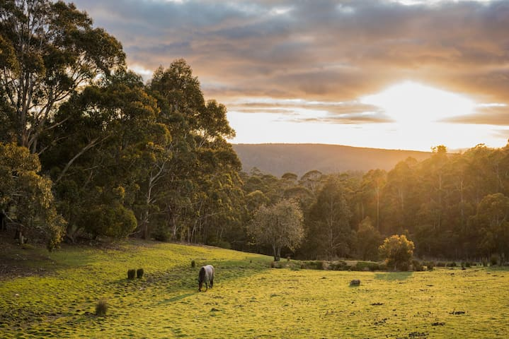 Mountain Retreat 12mins from Hobart - Ridgeway - Appartement