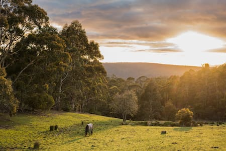 Mountain Retreat 12mins from Hobart - Ridgeway