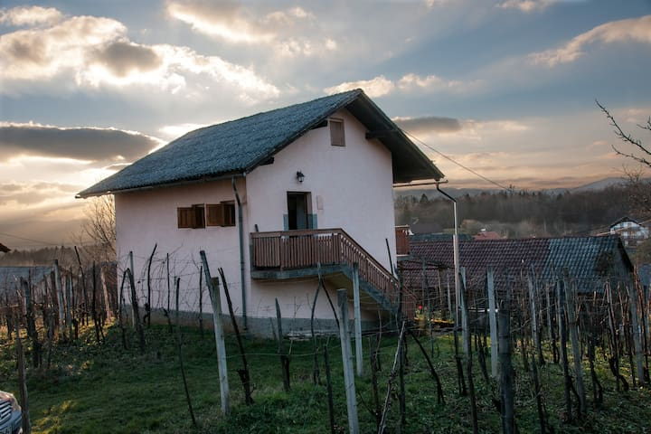 Peaceful vineyard cottage Kambic  - Metlika - Ev