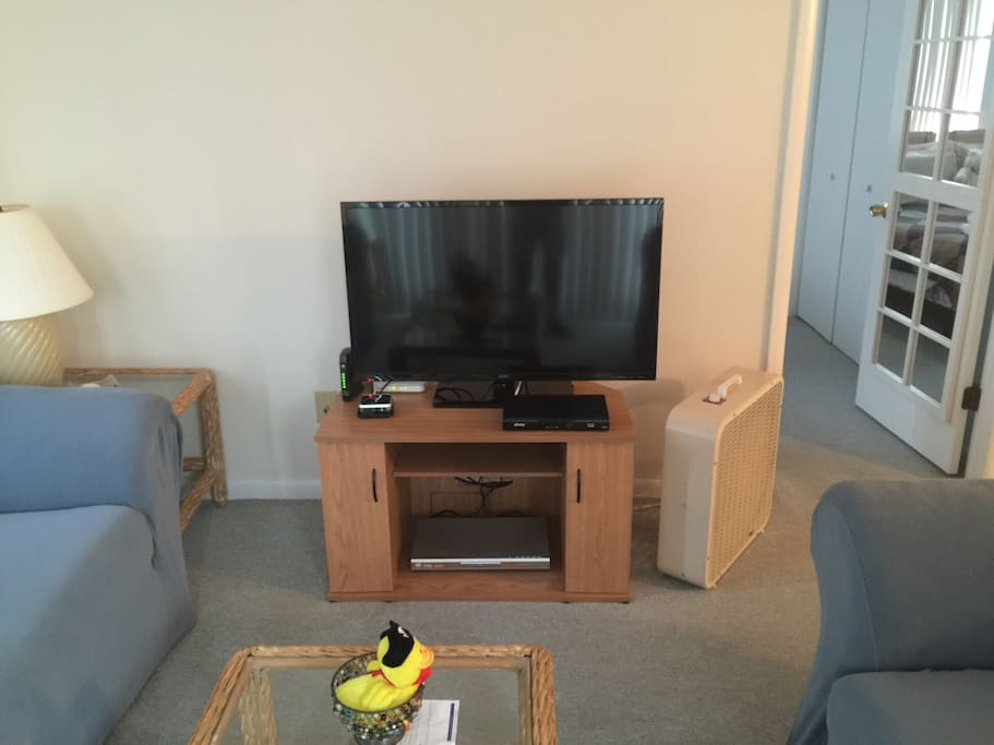 """Living Room 40"""" Led/LCD TV with cable and Internet Streaming, DVD."""