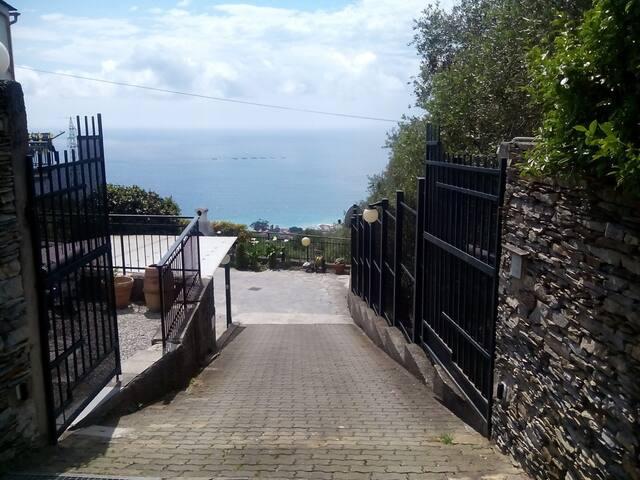 Sarina House Ocean View