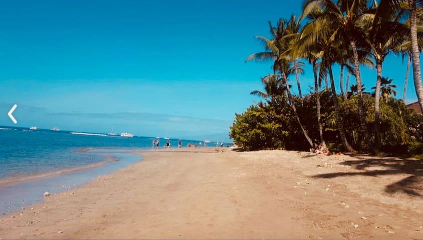 Beach at Lahaina Shores