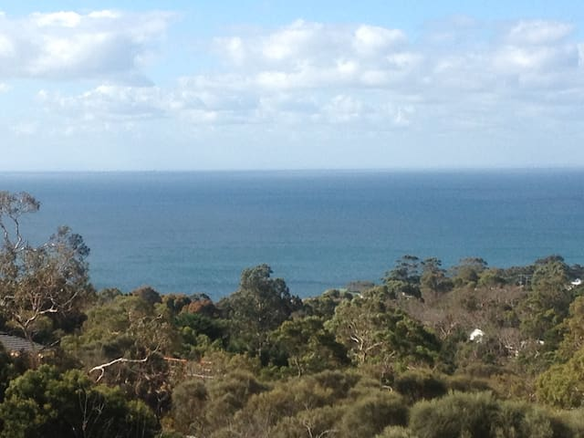 Views over the green native gully out to Port Phillip Bay and beyond.
