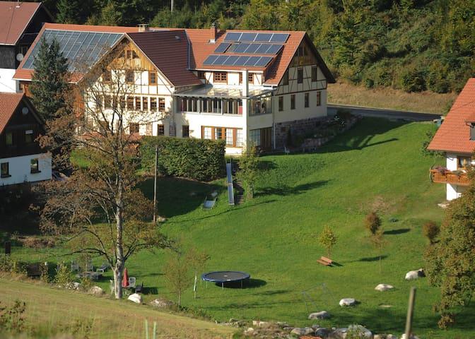 4 Sterne Luxus Maisonettewohnung im Nationalpark - Forbach - Apartment