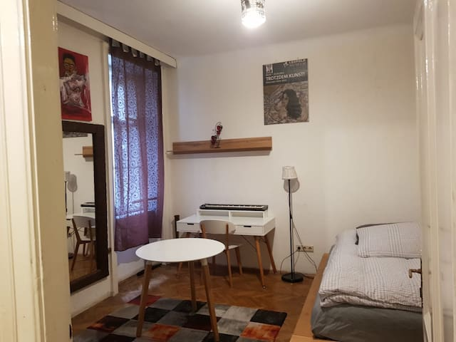 Nice and central apartment in VIENNA NEAR OPERA