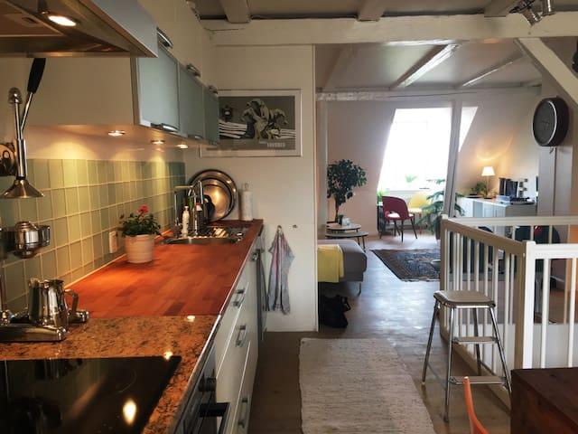 Wonderful 2 floor apartment in Kings Old Brewhouse