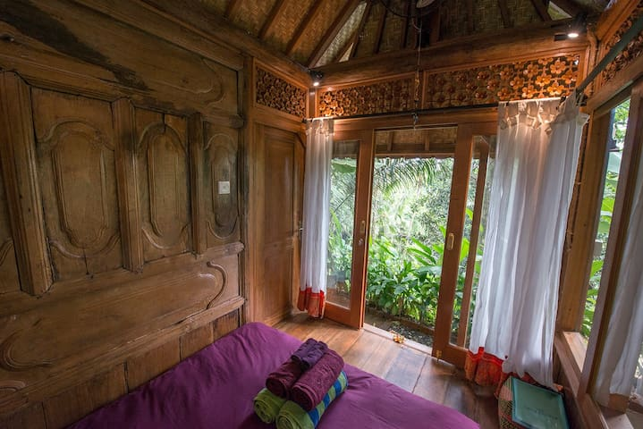 Siddhi - Rahasia Manis, Tiny Jungle Retreat - Pool