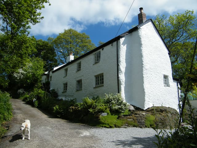 En suite double, Spring Cottage  B&B  ROOM THREE - Cornwall - Bed & Breakfast