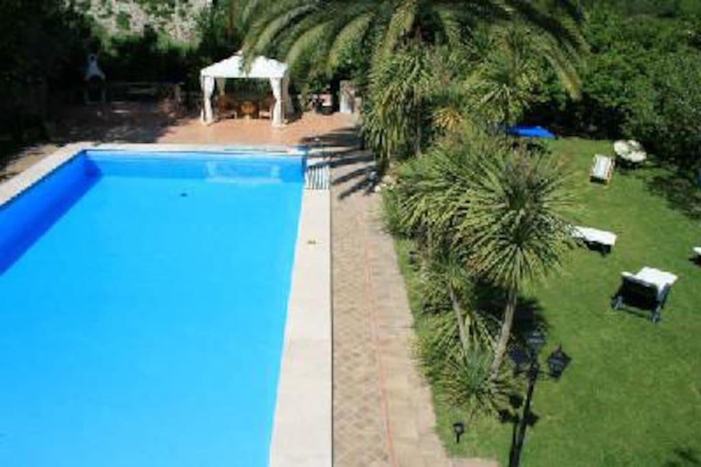 giardino+ piscina
