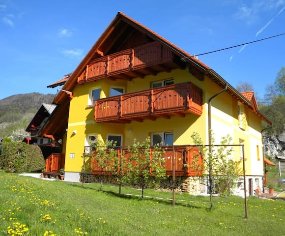 Apartments Pintar - Bohinjska Bela - Appartement