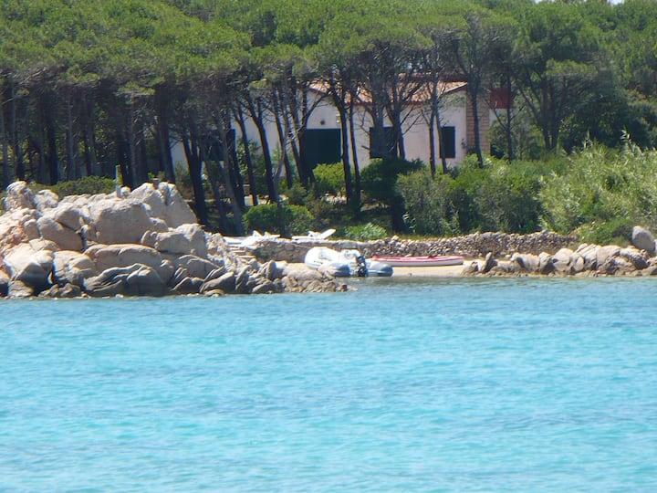 Villa con pineta e spiaggia