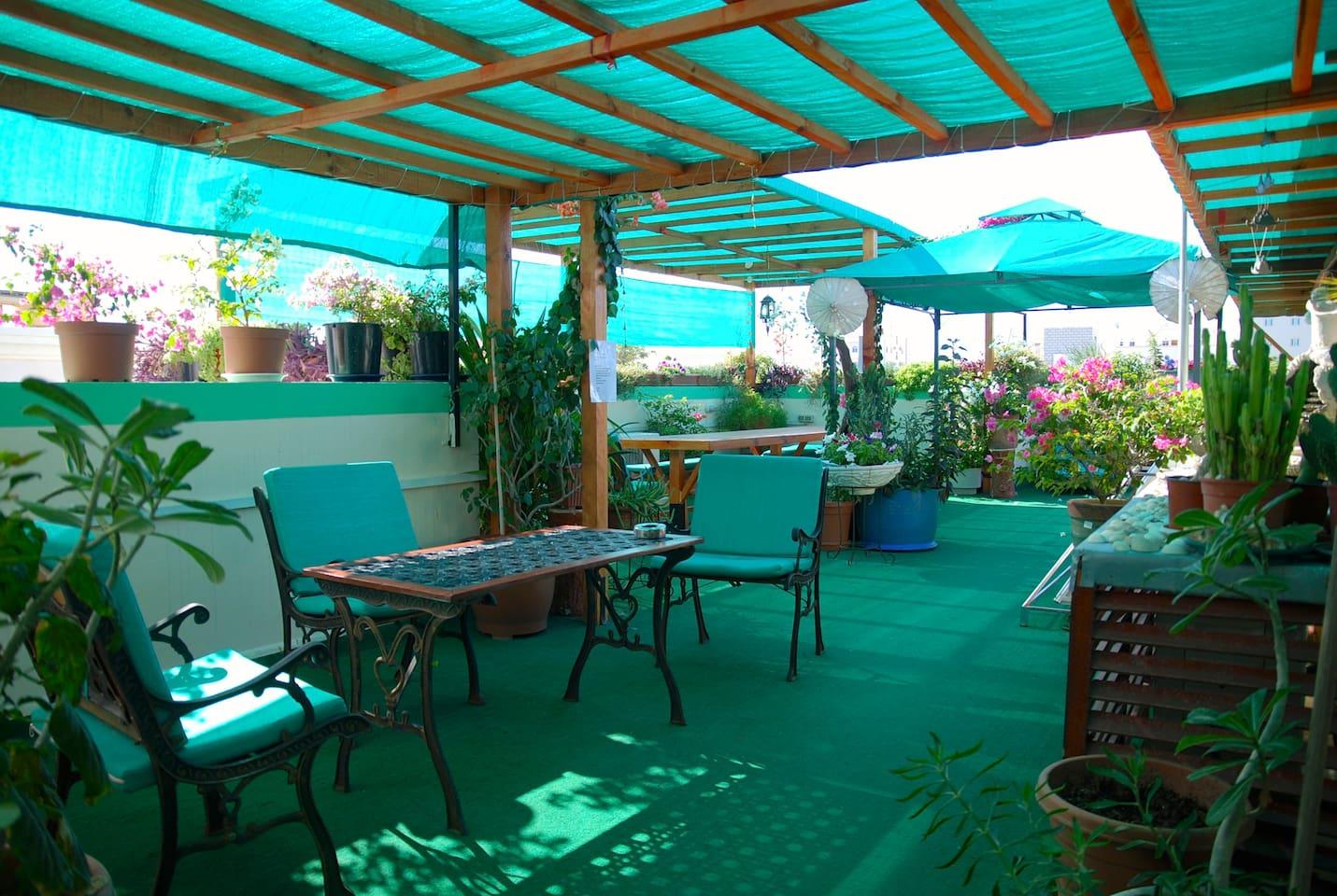 Roof Top Garden Parties and B-B-Q's