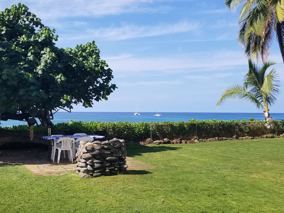 Overlooking the Ocean from the front yard.