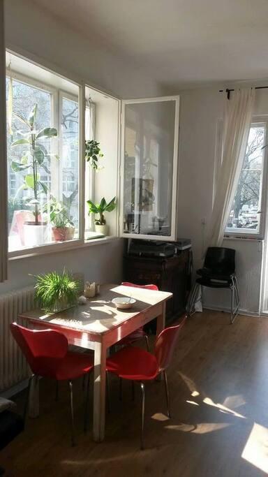Wohnzimmer- Gästezimmer/ living room- guest room
