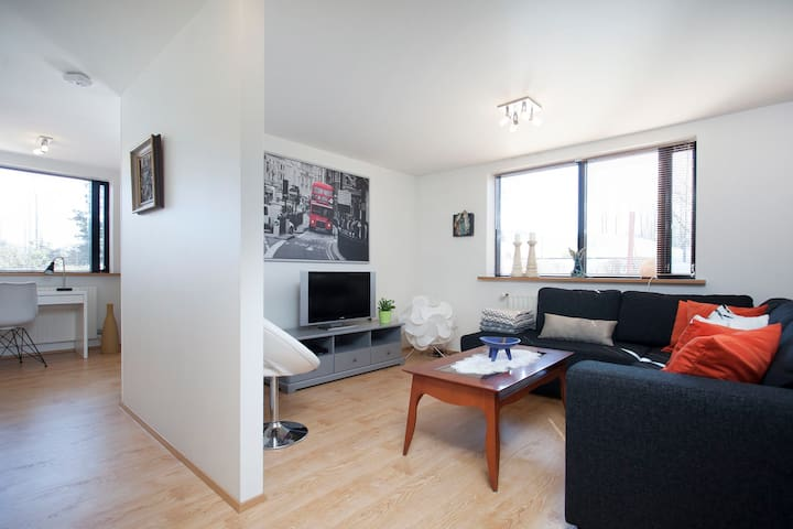 Beautiful apt in a residential area. Free parking.