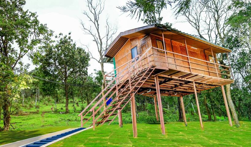 Stilt House - Eastern Incline of the Western Ghats - Ramakkalmedu - Altres