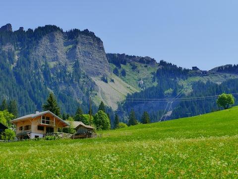 Apartament narciarski ze stopami w pobliżu Les Prodains Express