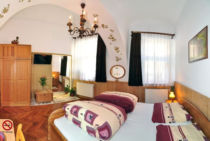 Romantic Studio historical centre - Brașov - Daire