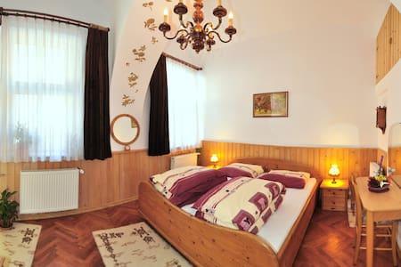 Romantic Studio historical centre - Braşov - Pis