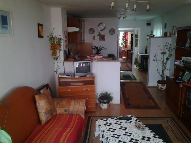 Panoramic private room - Târgu Mureș - Huis