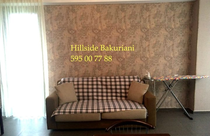 Cosy appartment in Bakuriani