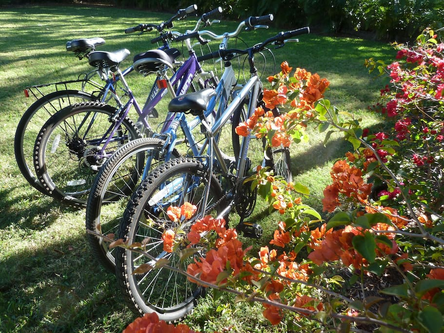 4 bikes to enjoy nice rides in the neighborhood !