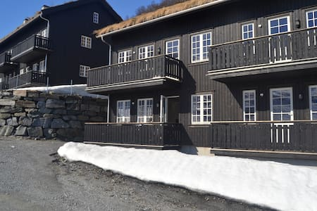 Holiday mountain apartment, Røldal