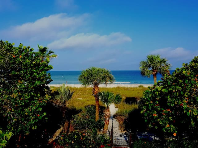 Life's A Beach View-Optional Boat Dock & Pool SL4 - St. Pete Beach - Huoneisto