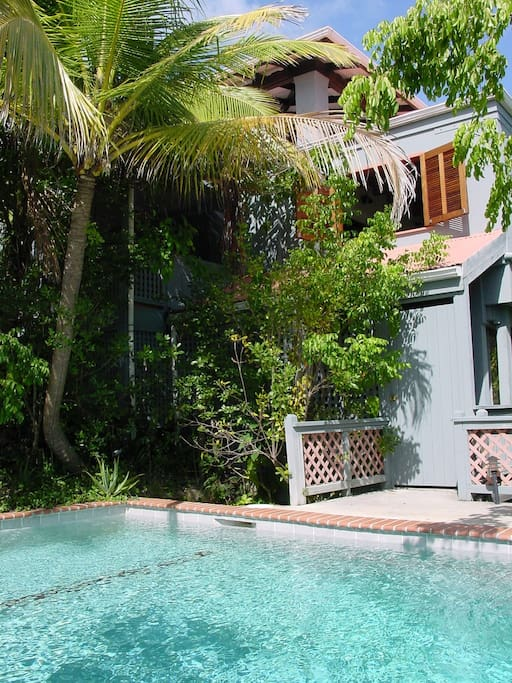 private pool and palm trees below condo's side window and porch