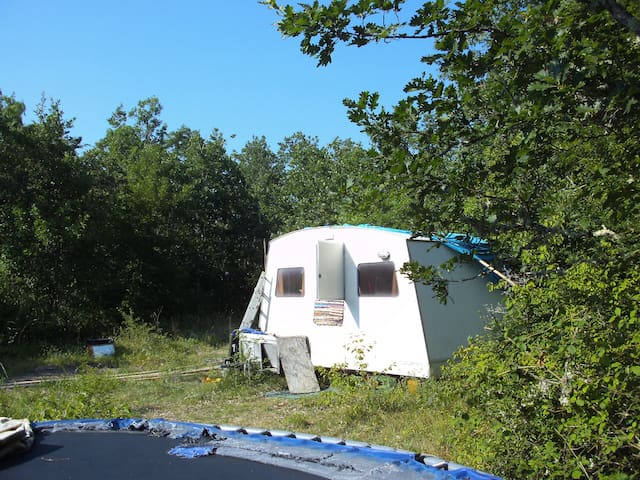 Caravan in the woods - Balaguier-d'Olt - Camper/RV