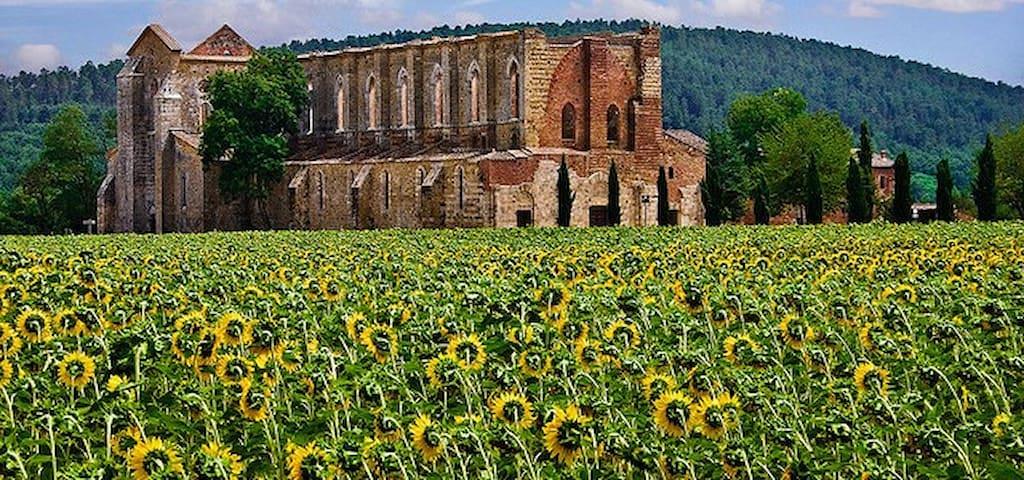 Abbazia Gotica di San Galgano, da visitare nei dintorni