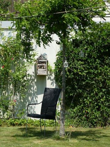 Sitzplatz unter Baum